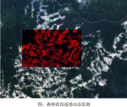 森林砍伐动态监测,森林病虫害监测,森林火灾监测等.