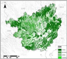 全国林地资源空间分布产品
